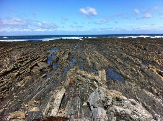 Cape Liptrap, chevron folds